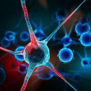 Neurons abstract background - stock illustration