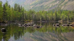 Lake and forest reflection Stock Footage