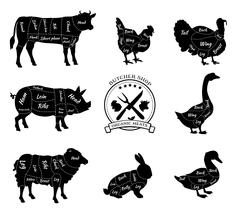 Set Schematic Vew of Animals for Butcher Shop - stock illustration