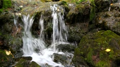 Stream and waterfall Stock Footage