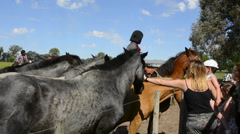 Buenos Aires Argentina Gaucho cowboy ranch for tourists outside city called Don Stock Footage