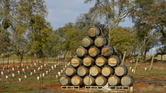 Plymouth California winery area east of Sacramento barrels for wine stacked Stock Footage