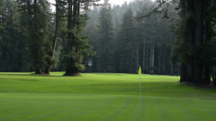 Northwood Calfornia trees and sunshine peaceful golf course called Northwood Stock Footage