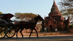 Stock Video Footage of Horse with harnessed carriages in Bagan of Myanmar slow motion