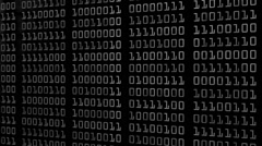 Binary Numbers Motion Background Alpha Matte Loop Stock Footage