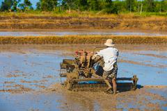 Vietnamese farmer prepares drowned field for rice sowing Stock Photos