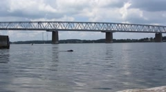 Dog Swimming under a massive old metal railroad bridge Stock Footage
