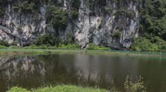 Fish Pond in Vietnam - stock footage