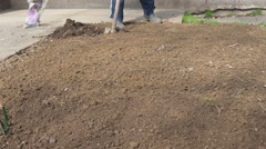 Dolly shot of rose planting, seedling in focus, gardener digs ground,close up. Stock Footage