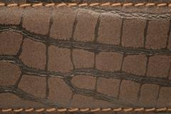 Crocodile Leather Strap Swatch Stock Photos