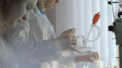 Researcher chemist conducting experiments in a laboratory test tube Stock Footage