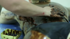 Massaging the skin using chocolate in a spa Stock Footage