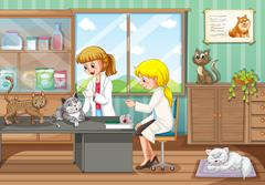 Two vets healing animals in the hospital Stock Illustration