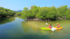 people kayaking in mangrove forest at sea coastal with happiness emotion - stock footage