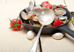 fresh clams on an iron skillet - stock photo