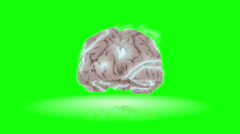 Animation of brain with electrical activity flickering across the surface. Stock Footage