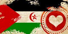 Western sahara flag Stock Illustration