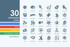 Set of organisms icons Stock Illustration