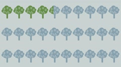 Three rows of trees, cash, coins on the tree Stock Footage