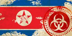 North Korea flag - stock illustration