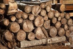 Pile of chopped fire wood prepared for winter Stock Photos