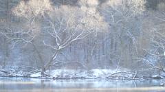 Sunny Mood smoke over the river Stock Footage