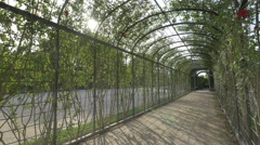 A rose trellis and a pavilion at Schönbrunn Palace, Vienna Stock Footage