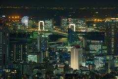 night cityscape of Odaiba landmark, Ferris wheel, Rainbow bridge - stock photo