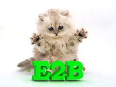 E2B  Feathery kitty with feathery raised upwards paws on white background Stock Illustration