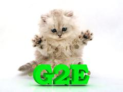 G2E  Feathery kitty with feathery raised upwards paws on white background Stock Illustration