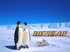 DEVELOP  Two foolish penguins and big silver chain on driftage ice on north p Stock Illustration