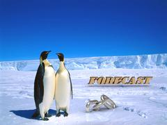 FORECAST  Two foolish penguins and big silver chain on driftage ice on north Stock Illustration