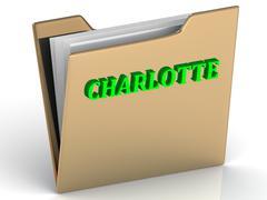 CHARLOTTE- bright green letters on gold paperwork folder on a white backgroun - stock illustration