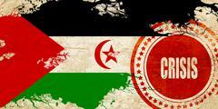 Western sahara flag - stock illustration