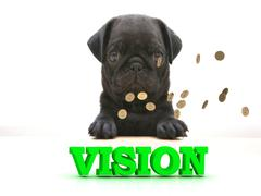 VISION  Bright word, Blackenning dog sort pug, golden coins on white backgrou Piirros