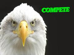 COMPETE  bright green volume letter, animall white eagle on black background Stock Illustration