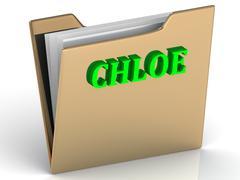 CHLOE- bright green letters on gold paperwork folder on a white background - stock illustration