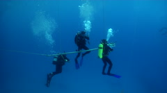 Group of scuba divers making a safety stop, HD, UP24353 Stock Footage