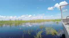 Airboat tour in beautiful Everglades swamp wilderness - stock footage