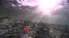 Ocean scenery shot moves up beach until it sits on the beach, person on island, Stock Footage