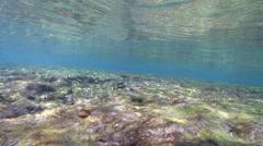 Ocean scenery small wave rolls overhead, on reef flat, HD, UP24574 Stock Footage