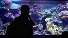 People looking at fish in a large aquarium 4k Stock Footage