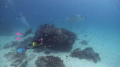 Buddy team of scuba divers swimming on cleaning station with Reef manta ray in Stock Footage