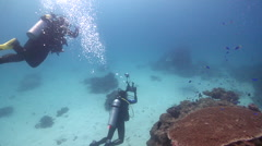 Buddy team of scuba divers taking images on cleaning station with Reef manta ray Stock Footage