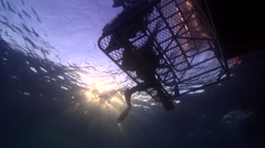 Buddy team of scuba divers exiting on water surface, HD, UP24687 Stock Footage