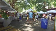 Pinecrest Gardens farmers market people and produce Stock Footage