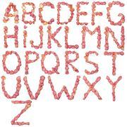 Full English alphabet  made of pink rose petal Stock Photos