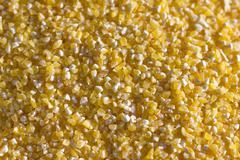 corn grits - stock photo