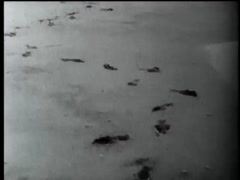 Footprints on sandy beach ending in a handprint Stock Footage