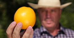 Farmer Man Present Extreme Closeup Orange Fresh Fruit Recommended Sweet Dessert Stock Footage